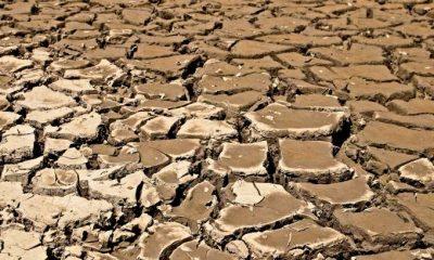 ONU alerta que escassez de água pode ser a nova pandemia 10