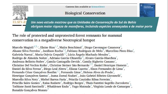 Rede colaborativa de pesquisadores se une para publicação de artigo sobre a conservação de mamíferos da Mata Atlântica 18