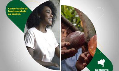 Instituto IPÊ prorroga inscrições para Mestrado Profissional em Conservação da Biodiversidade e Desenvolvimento Sustentável que possui parte presencial realizada na RPPN Estação Veracel 16