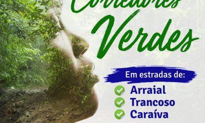 """PREFEITURA DE PORTO SEGURO CRIA """"CORREDORES VERDES"""", EM ESTRADAS DO ARRAIAL, TRANCOSO E CARAÍVA 35"""