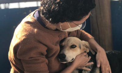 Cordélia sanciona lei para criar clínica veterinária atendendo a sonho antigo dos eunapolitanos 26