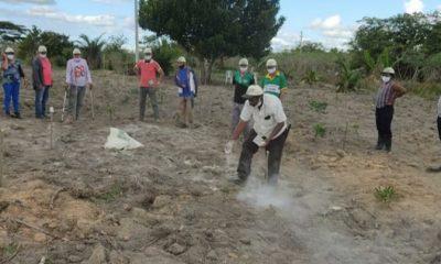 Secretaria de Agricultura encerra capacitação sobre cultura do cacau com resultado positivo para agricultores 48