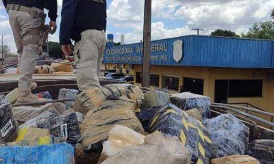 Polícia de MS faz a maior apreensão de drogas da história do país 28