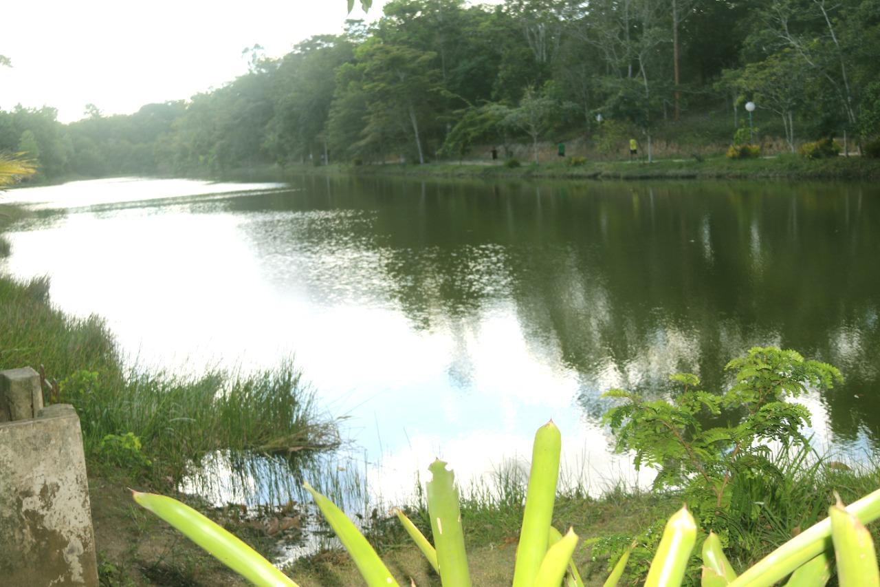 Revitalização transformará Parque Ecológico do Gravatá em exuberante cartão-postal de Eunápolis 26