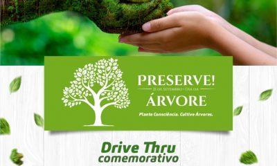 Dia da Árvore: Secretaria de Meio Ambiente distribui mudas de plantas nesta terça-feira 113