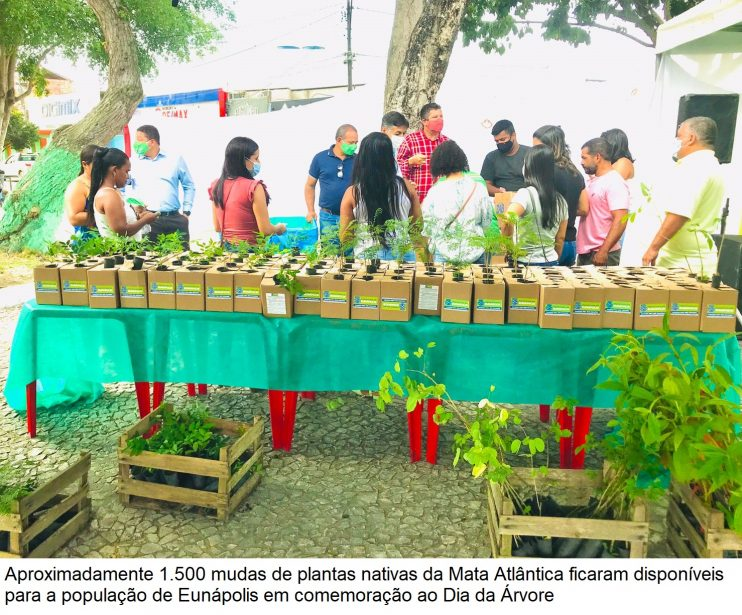 Dia da Árvore: Doação de mudas incentiva arborização em Eunápolis 32