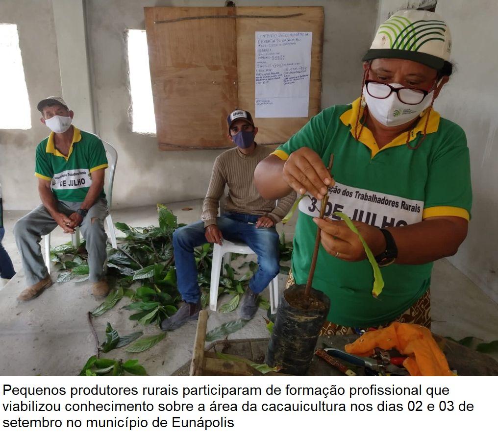 Secretaria de Agricultura viabiliza curso de formação sobre enxertia do cacau para produtores rurais 23