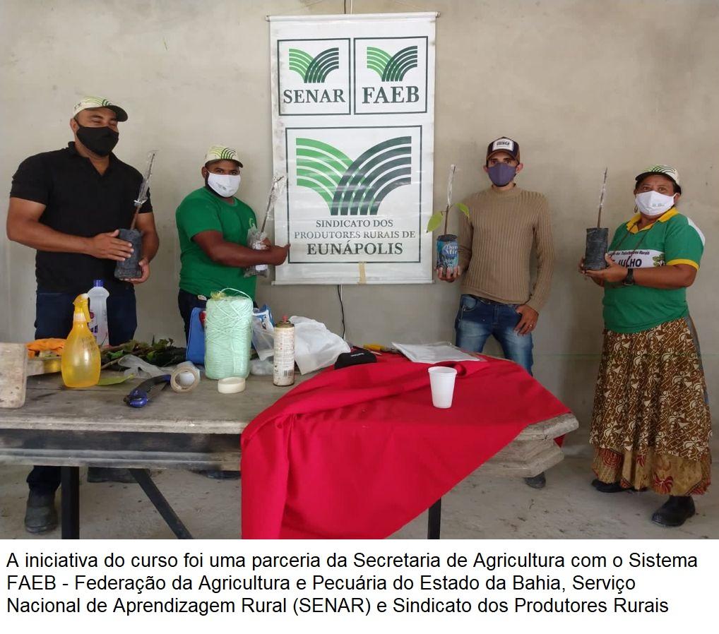 Secretaria de Agricultura viabiliza curso de formação sobre enxertia do cacau para produtores rurais 24
