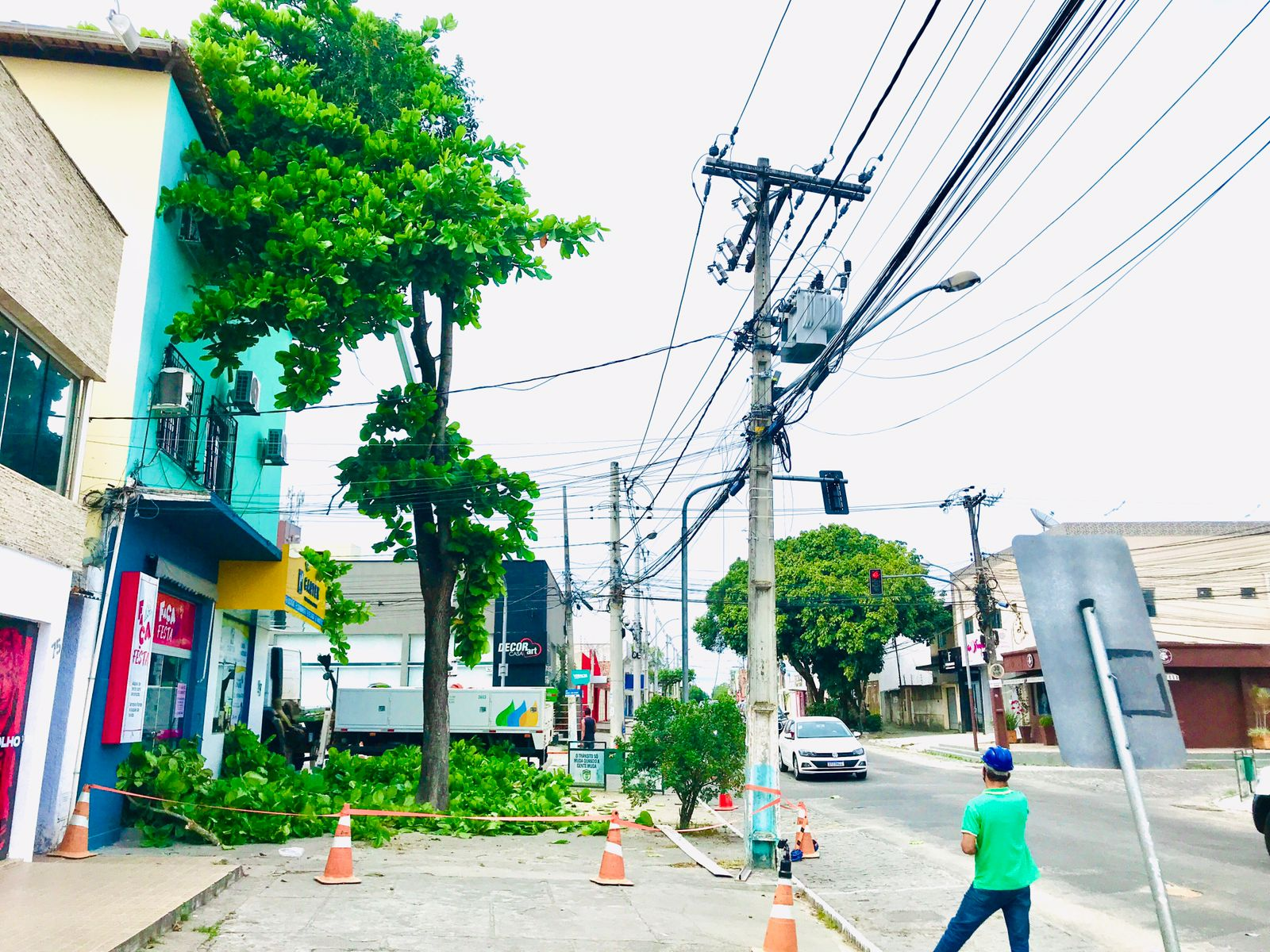 Prefeitura de Eunápolis remove árvore que oferecia risco à população 21