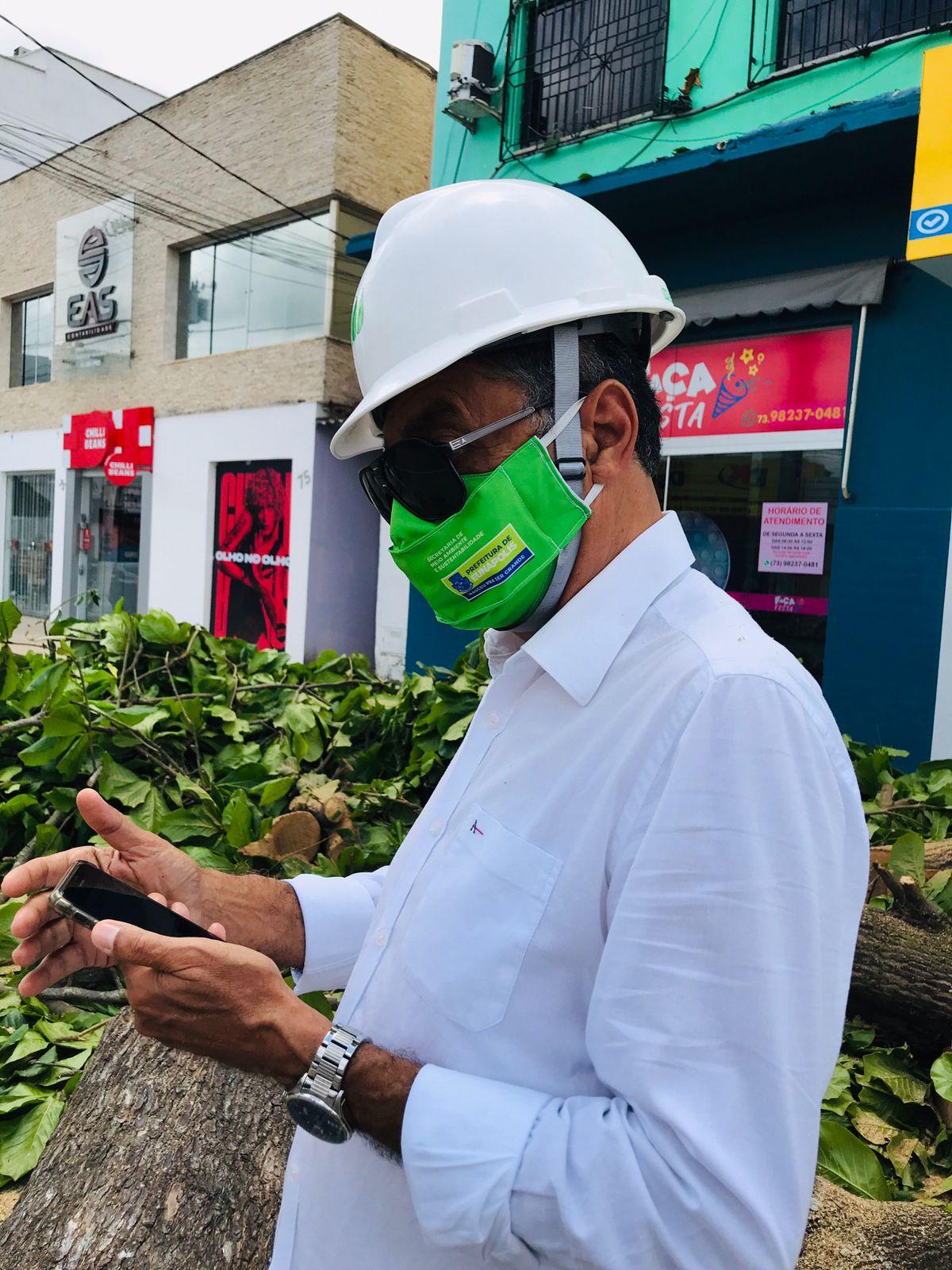 Prefeitura de Eunápolis remove árvore que oferecia risco à população 24