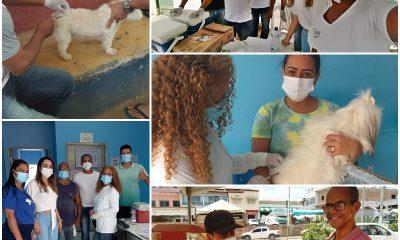 Prefeitura de Guaratinga inicia campanha de vacinação antirrábica 2021 para cães e gatos 100